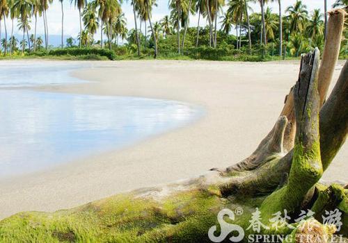 珍宝岛旅游景点介绍_珍宝岛旅游攻略