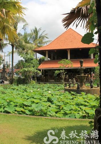 巴厘岛/美丽的荷花池