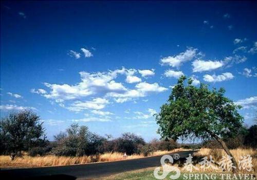 寻根问底游南非之比林斯堡野生动物园