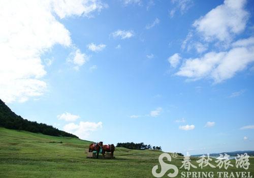 在济州岛成山日出峰看风景