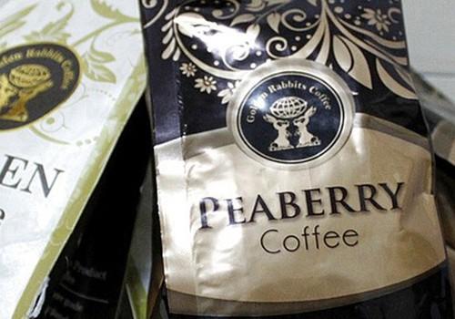 巴厘岛/猫屎咖啡