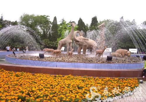 【郑州动物园旅游】郑州动物园旅游景点